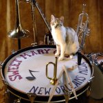 GROUPE JAZZ SWEET MARY CAT NEW ORLEANS