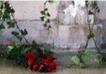 A fleur d eau, fleuriste créateur, est à votre écoute en toute occasion    mariage, naissance, deuil, anniversaire, réception, fête des mères, 1er  mai, ... 71474e5ddea