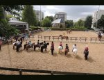 Photo PONEY CLUB DE VELIZY
