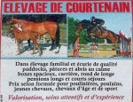 ELEVAGE DE COURTENAIN